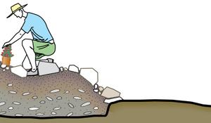 KROK IV - Osiadanie skalniaka